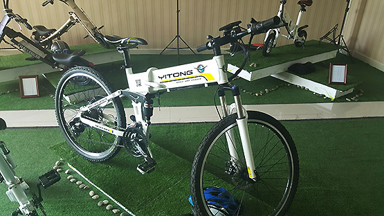 Folding Electric Bicycle For Sale