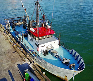 30 metre trawler for sale